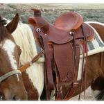 Rancher - all dark, silver conchos, full basket weave, oak leaves on seat and fenders, cheyenne roll, full double rigging